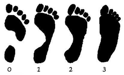 Отпечатки разных стоп