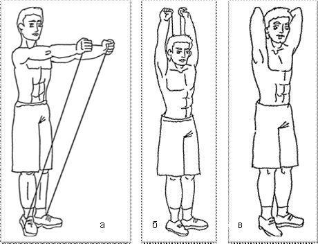 Тренировка плечевого пояса